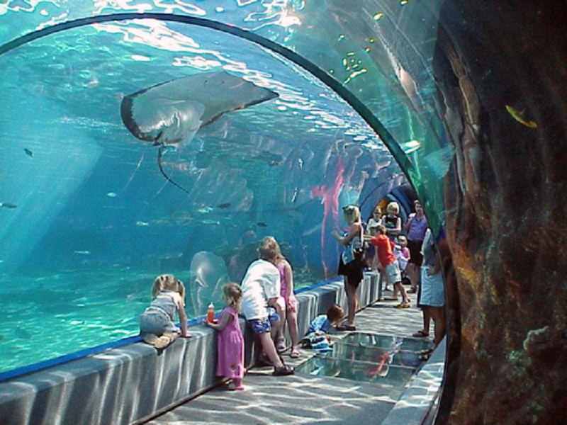 Ocean Center auf Maui